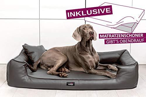 tierlando® Orthopädisches Hundebett Goofy VISCO | ~ inkl. Matratzenschoner ~ | Anti-Haar Kunstleder Hundesofa Hundekorb Gr. XL 120cm Graphit Ortho