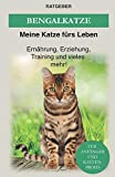 Bengal Katze: Das Bengalkatzen Buch - Erziehung, Ernährung und Pflege von Bengalen (Katzenrassen, Band 3)