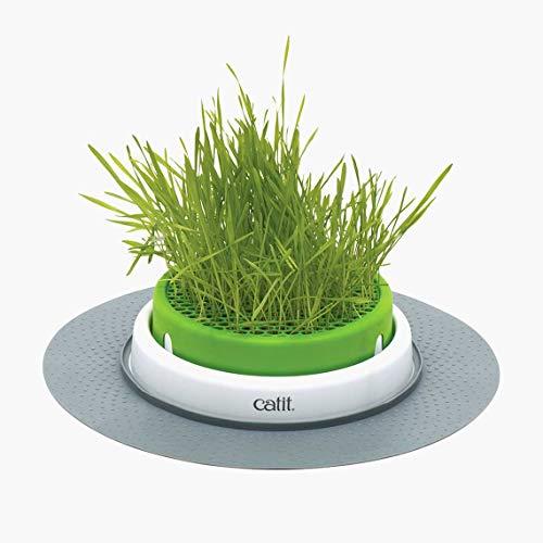 Catit Senses 2.0 Cat Grass Planter, Interactive Cat Toys