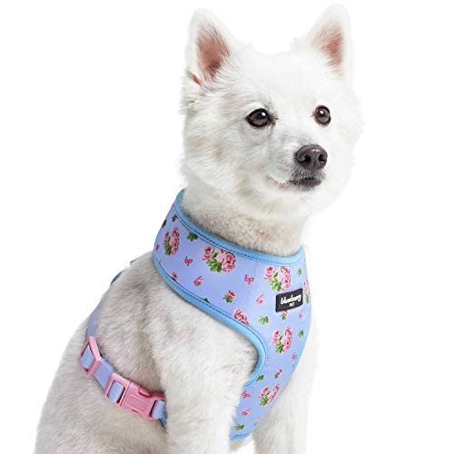 Blueberry Pet 2021 New Soft & Comfy Spring Scent Inspired Floral Pastel Blue Dog Harness Vest, Chest Girth 16' - 21', Small, Adjustable Harnesses for Dogs