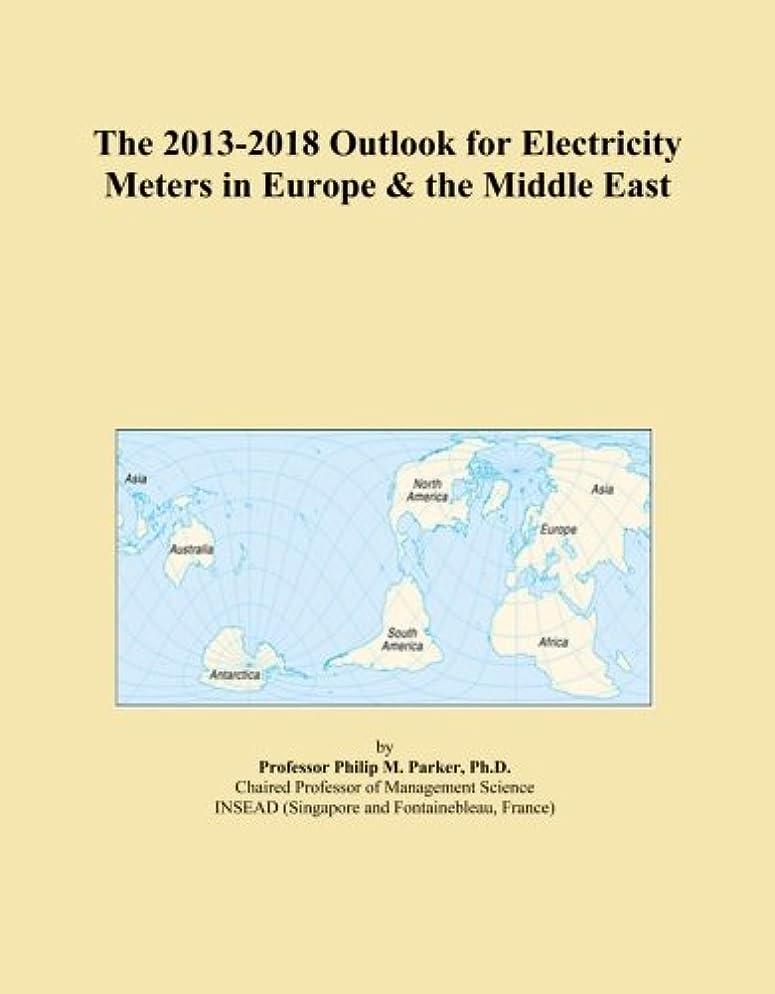 オゾン意識的証言The 2013-2018 Outlook for Electricity Meters in Europe & the Middle East