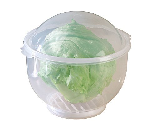 WalterDrake Lettuce KeeperTM - Lettuce Crisper Salad Keeper Container Keeps your Salads and Vegetables Crisp and Fresh- 7' X 8'
