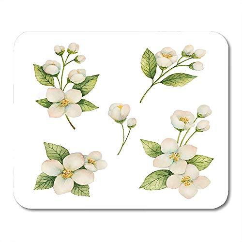 Mausemat Aroma Green Branch Aquarell Aus Blumen Und Jasminweiß Blumen Naturkosmetik Verpackung Und Tee Mousepad Rutschfeste Bunte Mousepad Office Mouse Mat Spiel Gedruckte Arbeit