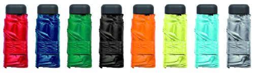 Euroschirm Dainty Regenschirm Farbe grün