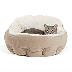Best Cat Bed for Colorpoint Shorthair Cat