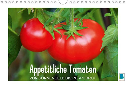 Appetitliche Tomaten – von sonnengelb bis purpurrot (Wandkalender 2021 DIN A4 quer)