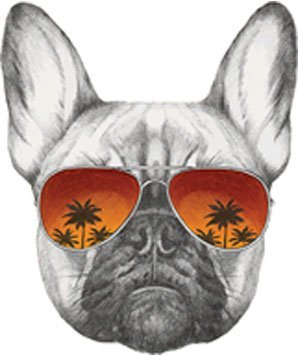 EW Designs Cool Pencil Sketch Frenchie French Bulldog with Sunset Sunglasses Vinyl Decal Bumper Sticker (4' Tall)