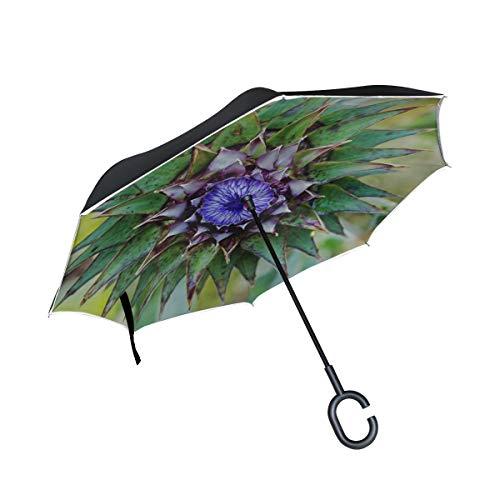 Paraguas Escoces marca Chawzie