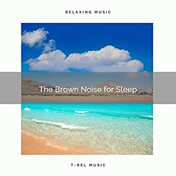 The Brown Noise for Sleep