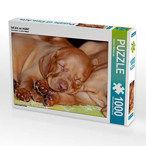 CALVENDO Puzzle Ich Bin so müde! 1000 Teile Lege-Größe 64 x 48 cm Foto-Puzzle Bild von Barbara Mielewczyk