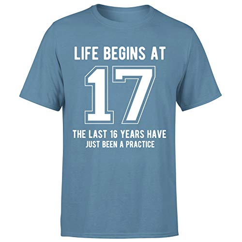 Life Begins at 17 Years Birthday Gift for Him - Camiseta de regalo para hombre