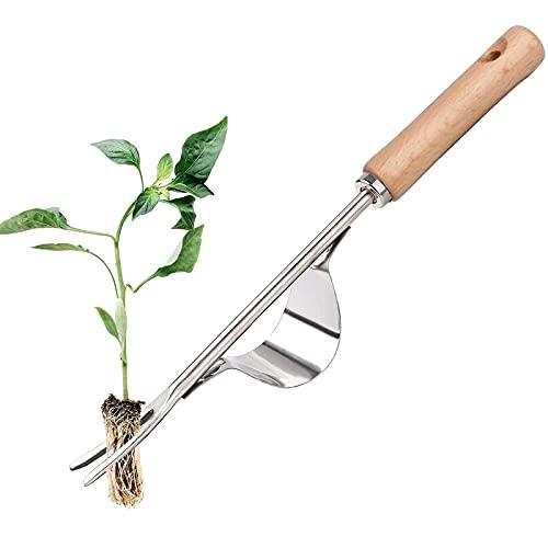 Herramienta para Quitar Malezas de Mano Acero Inoxidable Herramienta de Escarda Azadillas Jardinería de Mano Herramienta para Jardín 31CM Longitud Extractor Herramienta para Jardín Deshierbe.