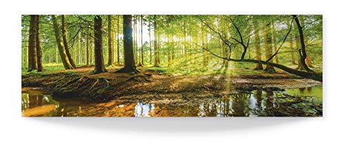 Artland 3D Wandbild aus Alu Bild gebogen Alubild einteilig 120x40 cm Panorama Wald Landschaft Bach Natur Bäume Sonne Frühling Grün T9IO