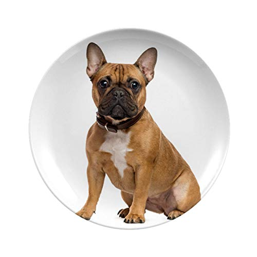 Creative Round Dinner Plates,French Bulldog Sitting And Looking At The Camera Isolated On White,dinner Plates For Everyday Use, Break-resistant And Lightweight,7 Inch 6 Piece Set