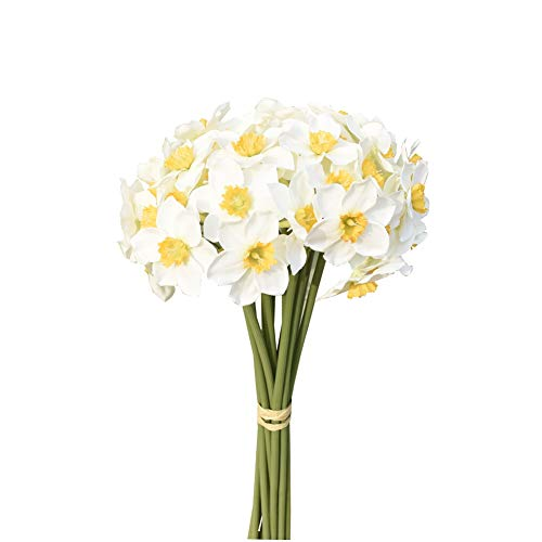 Mandy's 12pcs Artificial Daffodils Flowers 16' for Party Home Decoration(Vase not Include) (White)