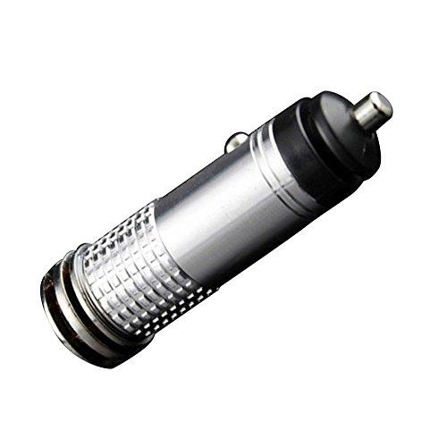 Steellwingsf - Filtro purificatore d'aria per auto con generatore di ozono anionico (argento)