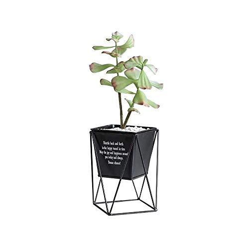 CNCYHP smeedijzeren bloempot Scandinavische minimalistische huisdecoratie vaas smeedijzeren vaas bloempot duurzaam en mooi