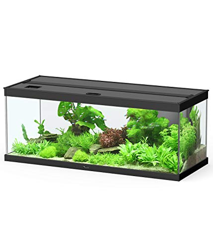 Dehner Aqua Premium Pro 100, 160 l, ca. 100 x 40 x 40 cm, Glas/Aluminium
