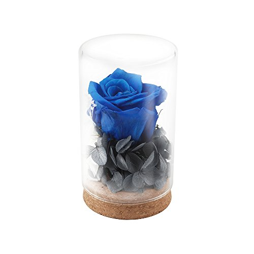 HQQD Handmade Preserved Flower Rose, Never Withered Roses, Upscale Immortal Flowers,Gifts for Women,Her,Girls,Sister, Mother