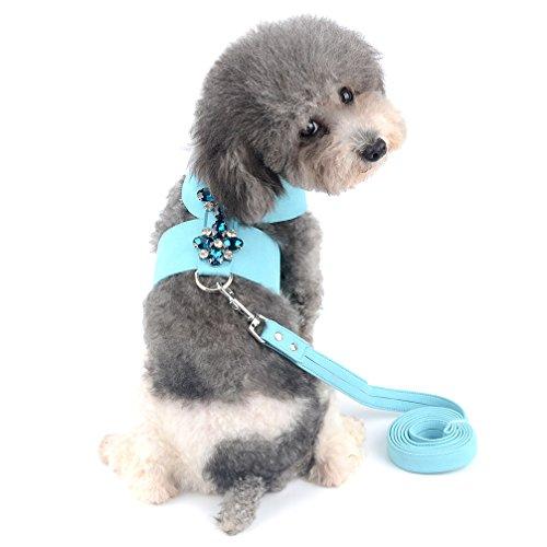 Ranphy Weiches Wildleder Bling Hundegeschirr mit Strass No Pull Weste und Leine Set Verstellbar Kleine Hund Katze Geschirr für Spaziergänge Blau Größe M