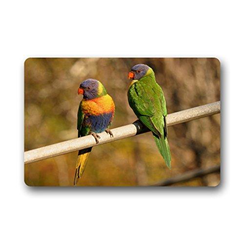 Doubee Adapter Neuf générique Mode Paillasson Design Birds Premium Tapis Anti-Poussière Maison passwort 46 cm x 76 cm, Tissu, E, 18\