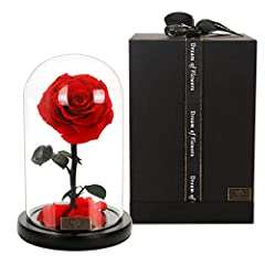 💕A Token of Forever Love - Well-preserved roses, falling petals, bright glass domes, wooden bases are kept in an elegant gift box. The fresh and beautiful eternal rose represents love forever, it can help you express your heart. 💕Beauty and the Beast...