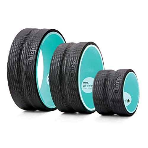 Best Yoga Wheels