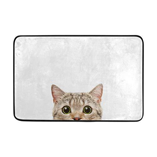 Orediy rutschfester Badteppich Fußmatten schottische gerade Katze Eingang Türmatte Küche Badezimmer Teppich Dusche Badewannenmatten 40 x 60 cm