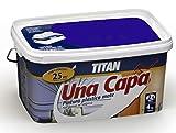 Titan M125538 - Pintura plastica monocapa mate 2.5 l gris intenso