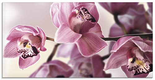 Artland Glasbilder Wandbild Glas Bild einteilig 100x50 cm Querformat Natur Asien Blumen Blüten...