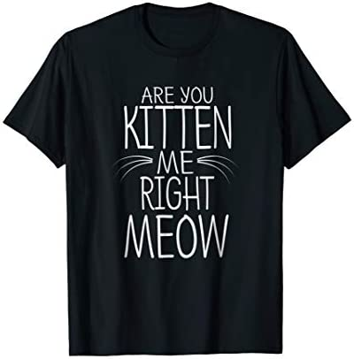 Are You Kitten Me Right Meow T Shirt Funny Cat Joke Tee product image