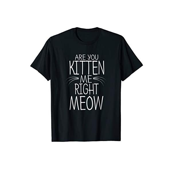 Are You Kitten Me Right Meow T-Shirt Funny Cat Joke Tee