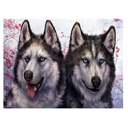 YXBNB DIY Malen Nach Zahlen Erwachsene Nette Wolf Tierbilder DIY Gemälde nach Zahlen Wandkunst Acrylbilder Handbemalte Wohnkultur für Wohnzimmer 40x50cm