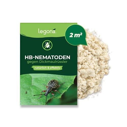 Legona HB-Nematoden gegen Dickmaulrüssler - 2m² / 1 Mio - hochwirksam & biologisch Dickmaulrüssler und Engerlinge bekämpfen - Nematoden gegen Junikäfer und Gartenlaubkäfer