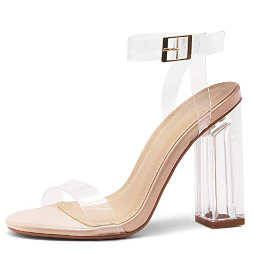 Shoe Land SL-CLLAARY Women's Perspex Heel Ankle Strap Adjustable Buckle Lucite Clear Block Chunky High Heel Open Toe Sandal ClearNude 7.0