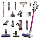 Dyson Cyclone V10 Animal Pro with 15 Tools Including...