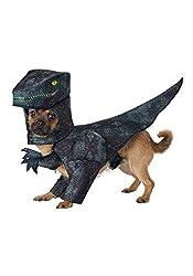 5. California Costumes Pet Pupasaurus Rex Dog Costume