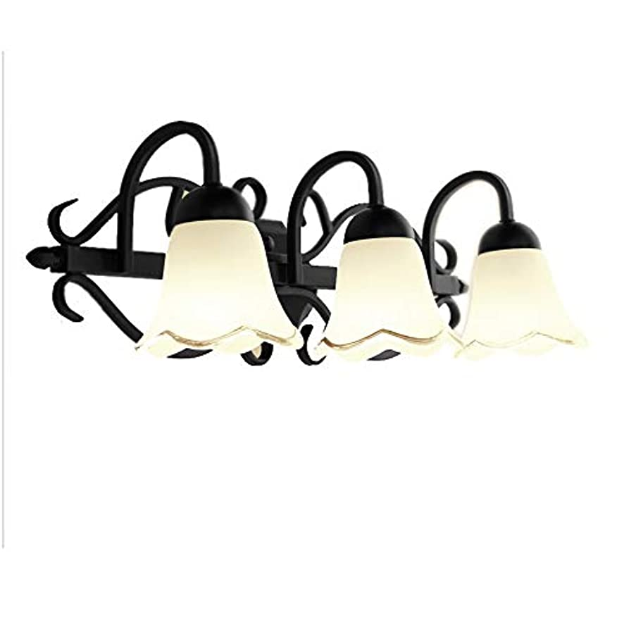 MMJ Led American Mirror Headlights Bathroom Country Retro Mirror Lamp Bathroom Bathroom Mirror Cabinet Wrought Iron Makeup Lamp (Color : Warm White Light, Size : M-57cm)
