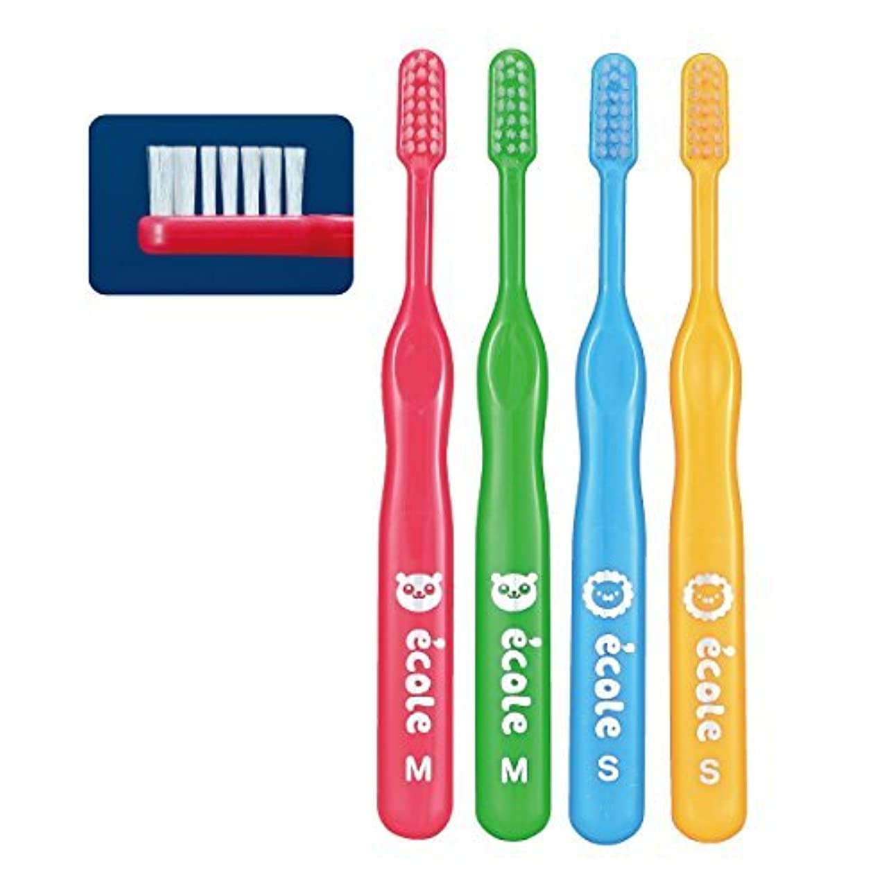 辛いライラックグラフリセラ エコル 幼児~小学生用歯ブラシ Mふつう 24本入り