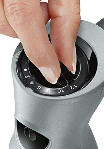 Bosch-Stabmixer