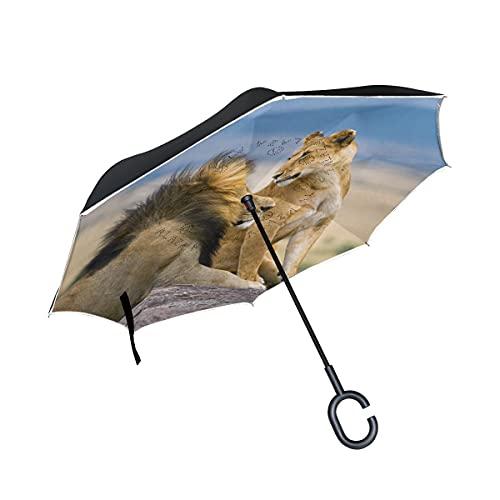 N\C Parapluie de Lion inversé à Double Couche avec Parapluie de Pluie Coupe-Vent inversé pour Voiture en Plein air avec poignée en Forme de C Chen