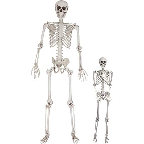 Halloween Life Size Skeleton Value 2 Pack - Adult (5' 4