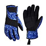 TRM Ski Gloves Waterproof and Windproof Outdoor Warm Gloves Motorcycle Gloves for Winter,Blue,M