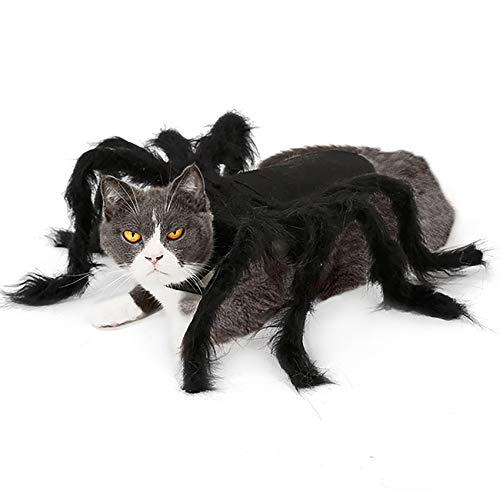 Geneic Disfraces de Halloween para Perros Gatos Mascotas Ropa Arañas Horribles Mascotas Divertidas Disfraz de Cosplay Pequeño Tamaño Mediano (S)
