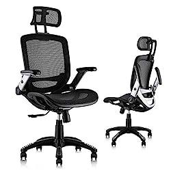 Image of Gabrylly Ergonomic Mesh Office Chair, High Back Desk Chair - Adjustable Headrest with Flip-Up Arms, Tilt Function, Lumbar Support and PU Wheels, Swivel Computer Task Chair: Bestviewsreviews