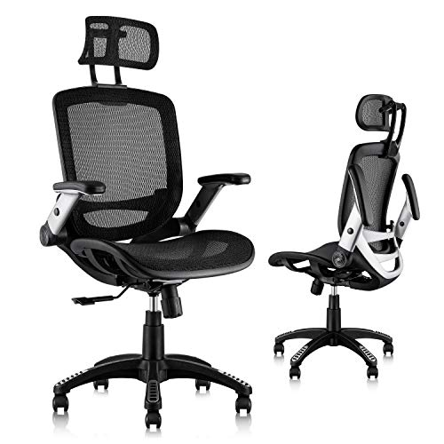 Gabrylly Ergonomic Mesh Office Chair, High Back Desk Chair - Adjustable Headrest...
