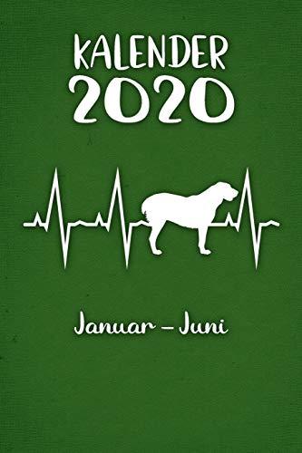 Kalender 2020: Grüner Tageskalender Alabai Herzschlag Hunde 1. Halbjahr Januar Juni ca...