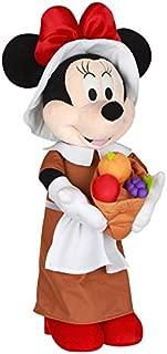minnie mouse pilgrim