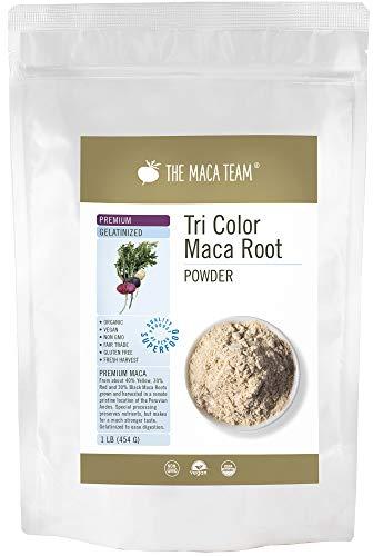 Maca Premium Gelatinizada en polvo BIO, 454 gr. Cosecha orgánica certificada de Perú, comercio Justo, sin OGM, sin Gluten y Vegana, 50 dosis.