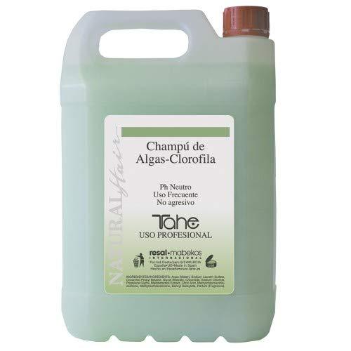 Tahe Natural Hair Champú Profesional de Peluquería de Algas Clorofila Ph Neutro Uso Frecuente No Agresivo, 5 L